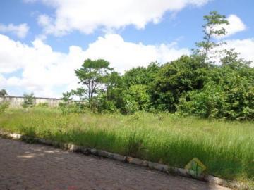 Joao Pessoa Ipes Terreno Locacao R$ 4.000,00  Area do terreno 1210.00m2
